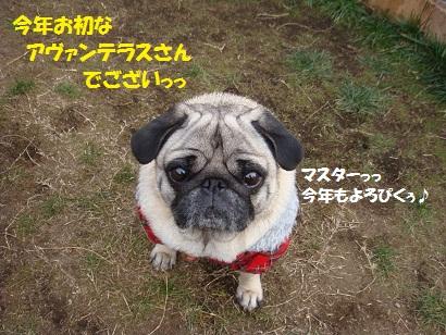 DSC01148_20110609203814.jpg