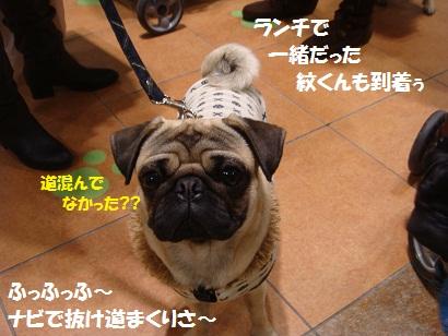 DSC01467_20110621051230.jpg