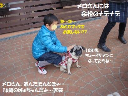 DSC01853_20110626154558.jpg