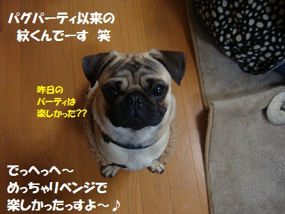 DSC02121_20110717033529.jpg