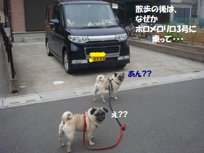 DSC06647_20110529195018.jpg