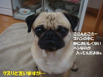 DSC07118.jpg