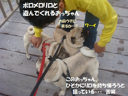 DSC07416_20110623024856.jpg