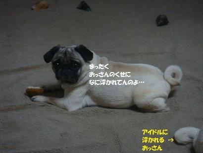 DSC07572_20110708041049.jpg