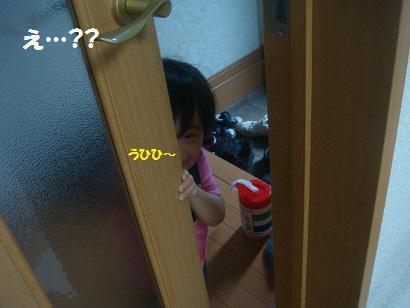 DSC07696_20110626204922.jpg