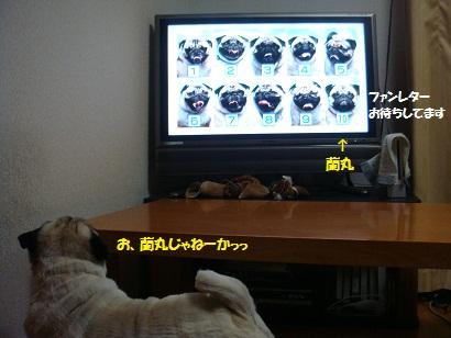 DSC08161_20110708050156.jpg