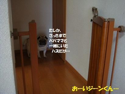 DSC08622_20110719185646.jpg