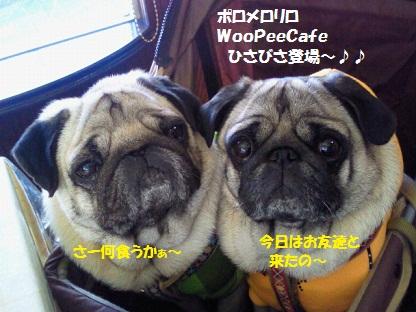 NEC_0001_20110529212702.jpg
