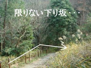 20070118202208.jpg