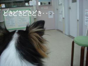 20070119120411.jpg