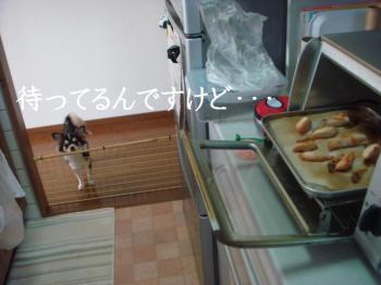 20070208133147.jpg