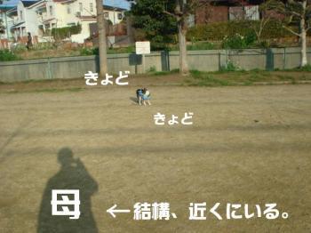 20070211100615.jpg