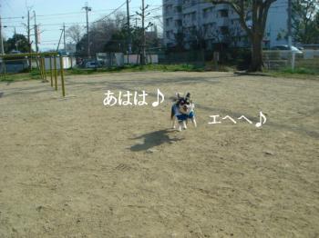 20070304105901.jpg