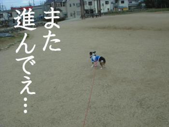 20070311124324.jpg