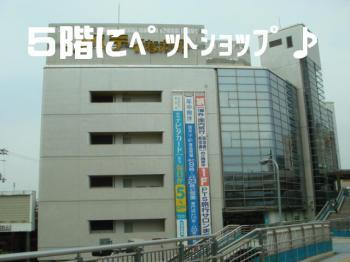 20070329185205.jpg