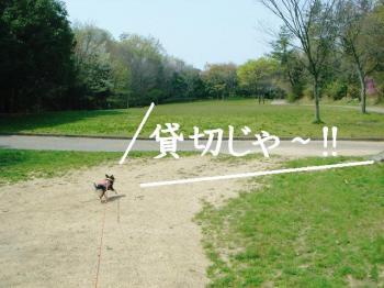 20070412142411.jpg