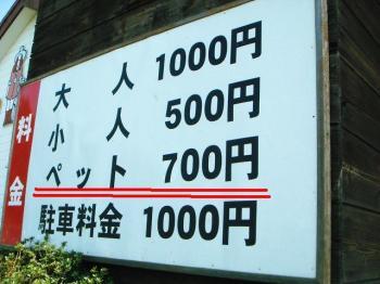 20070415094205.jpg