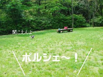 20070420133152.jpg