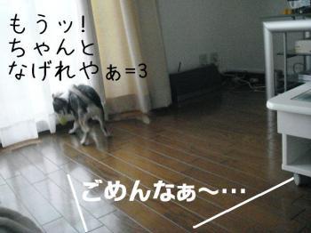 20070531142221.jpg