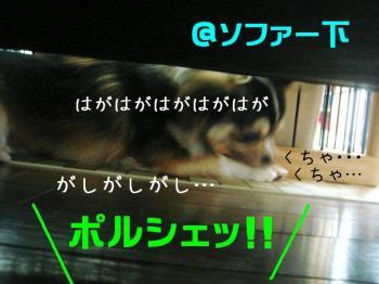 20070604113649.jpg