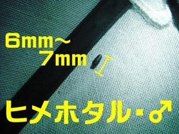 20070607132235.jpg