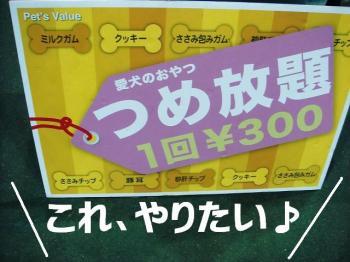 20070924120757.jpg
