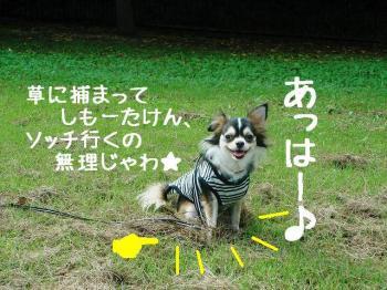 20071001113943.jpg