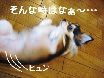 20071018135918.jpg
