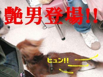 20071102103156.jpg