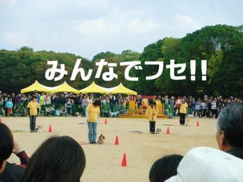 20071112141037.jpg