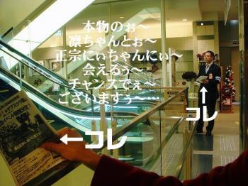 20071125115910.jpg