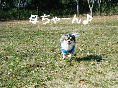 2008011105.jpg