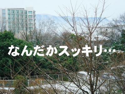 2008012107.jpg