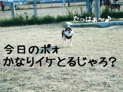 DSC0609282.jpg