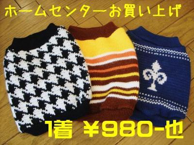 DSC608797.jpg