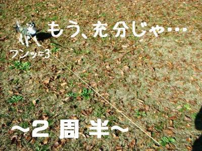 DSC708873.jpg