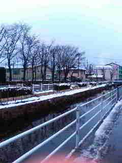 2008-0121_yuki.jpg