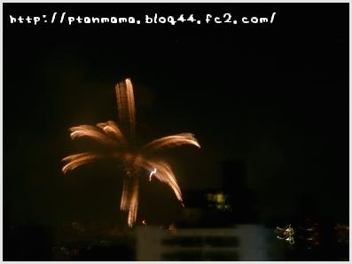 CIMG0340_20110801230432.jpg