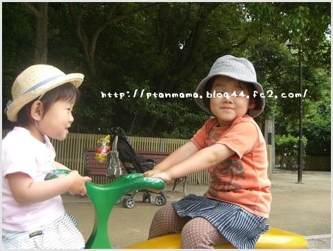 CIMG3884.jpg