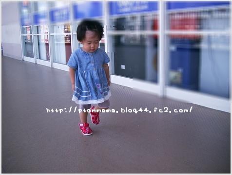 CIMG4418.jpg