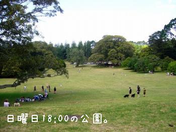 s-P1210147.jpg