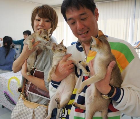 3)シンガの3妖精ちゃん
