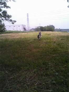 TS330296-010608.jpg