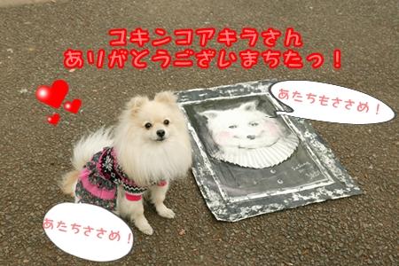 0118-11_20120118205147.jpg