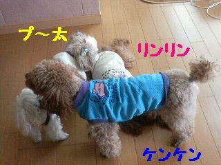 200801131250001.jpg