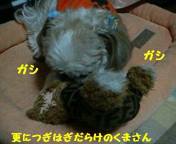 200801261639001.jpg