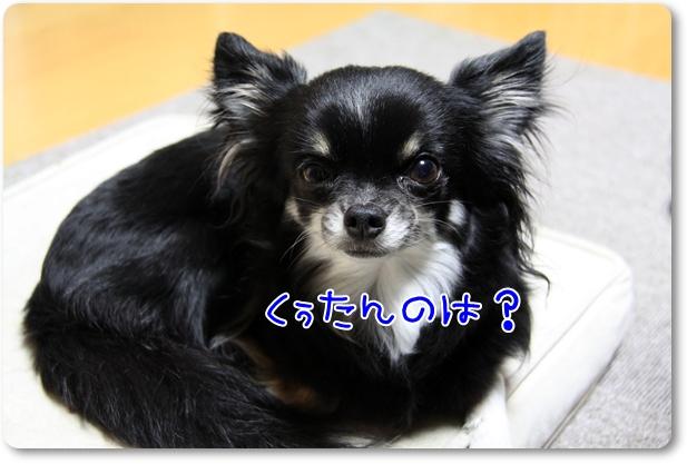 003_20110422185219.jpg