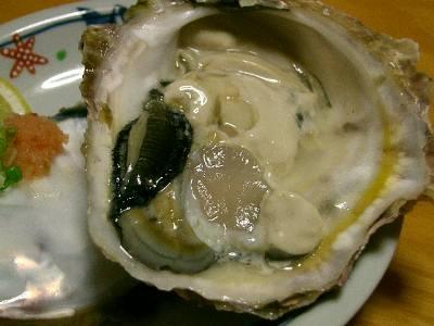 天領岩牡蠣