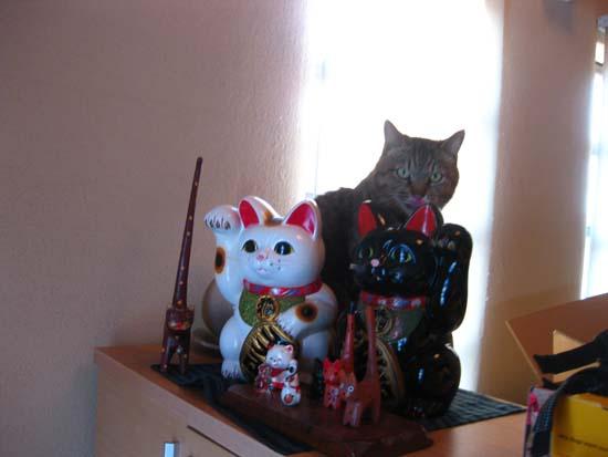 05招き猫