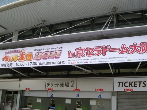 P1510602.jpg